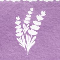 Lavender - výživové poradenství